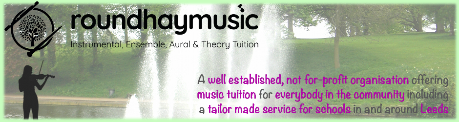 roundhay-music-leeds-music_lessons-banner4-violin-fountain.png
